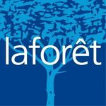 LAFORET IMMOBILIER SAE CONSEIL