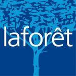 LAFORET Immobilier - AVENIR IMMO AVESNOIS